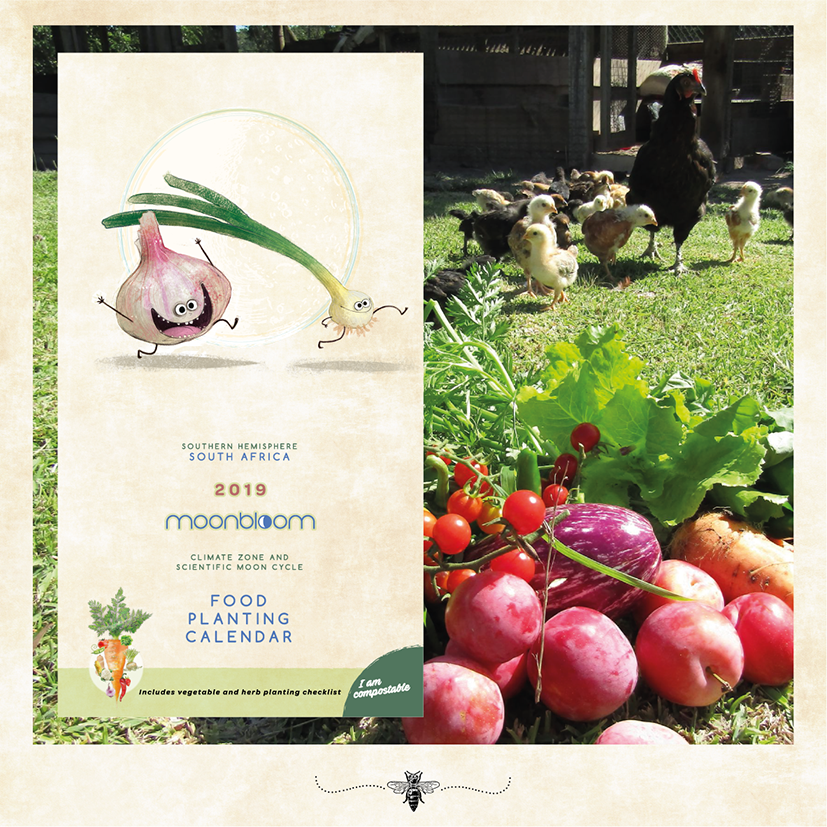 South Africa vegetable herb planting moon cycle calendar