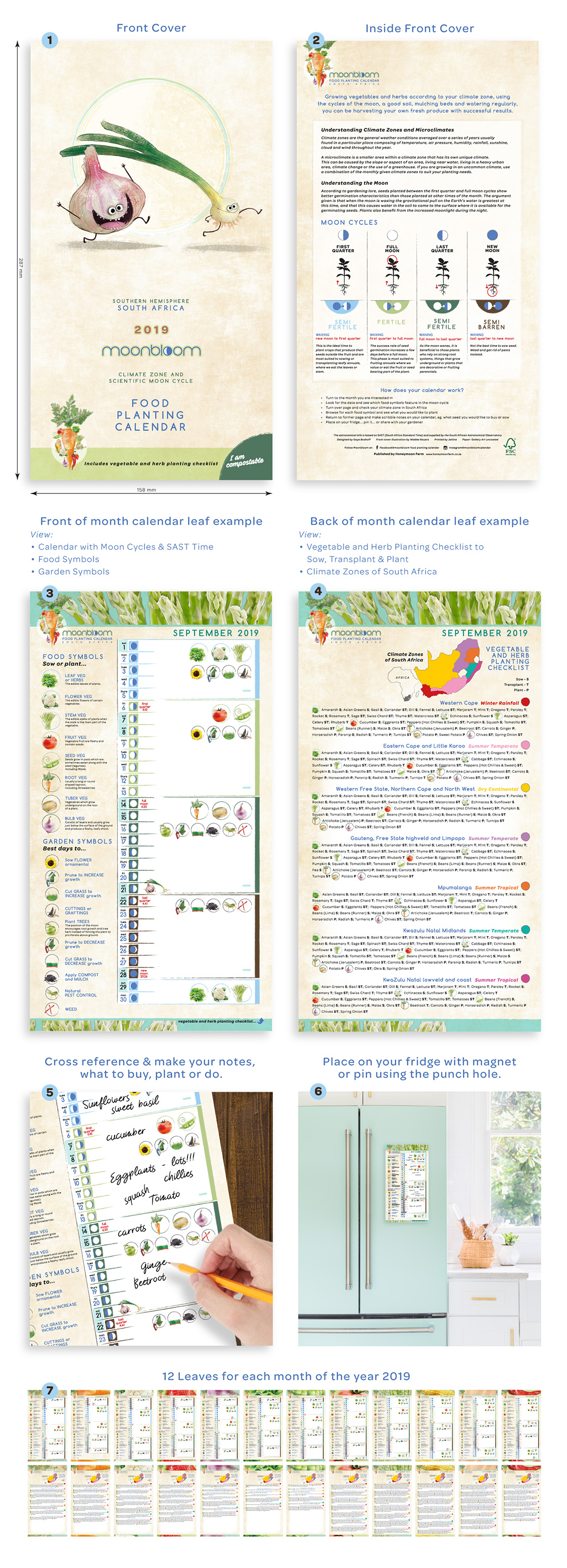 Moonbloom South Africa vegetable and herb food planting calendar mon cycles