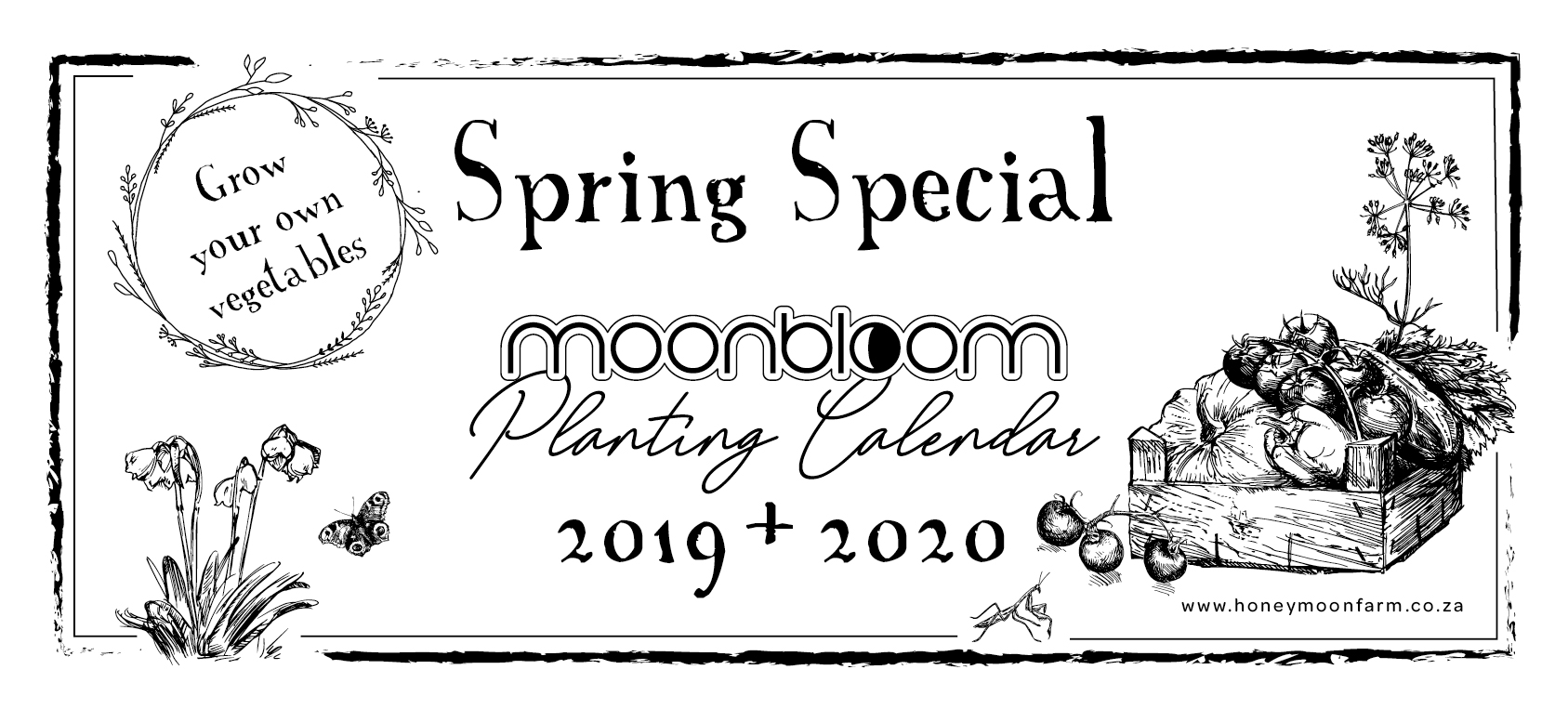 spring special moonbloom planting calendar south africa