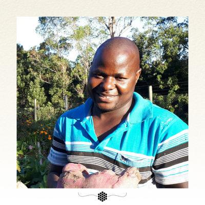Moonbloom vegetable planting calendar South Africa